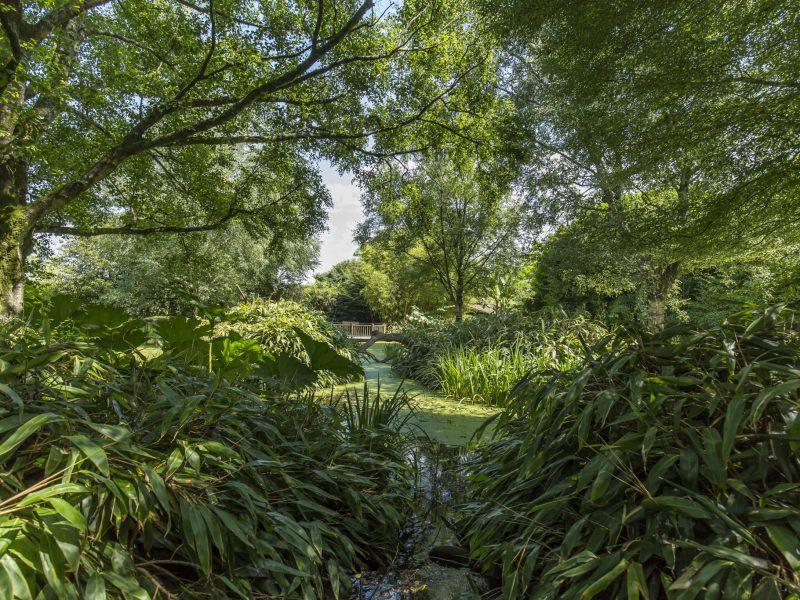 Découvrez le dernier reportage réalisé sur les jardins zoologiques de Champrépus