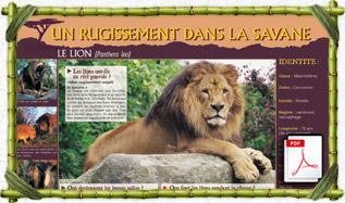 panneau_pedago_lion