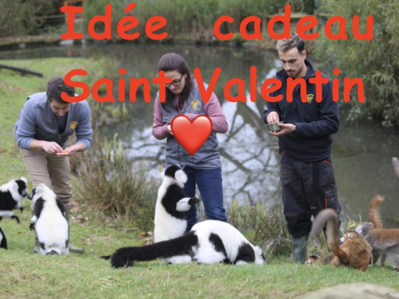 Idée cadeau Saint Valentin 😍